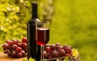 Bottle of red wine with wineglass and grapes in vineyard